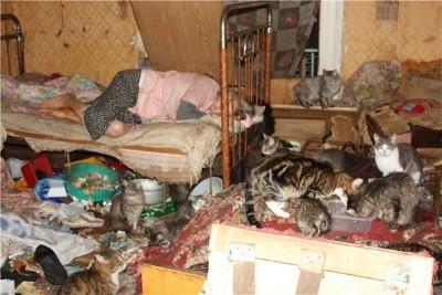 Изображение - Можно ли выселить собственника из квартиры 3c041ad04075